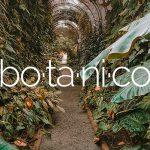 Il giardino botanico di Tenerife