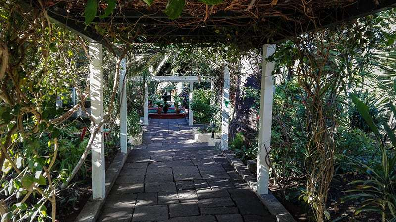 Visita il più vecchio giardino di Tenerife